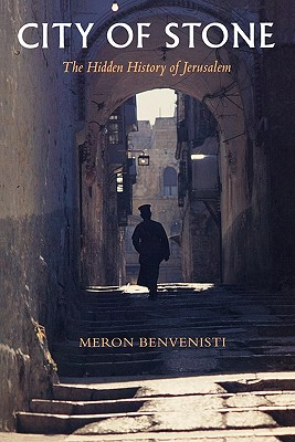 City of Stone By Benvenisti, Meron